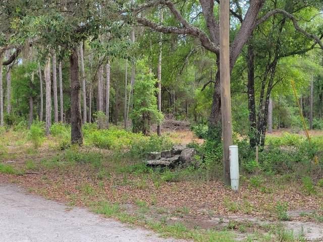 7890 N Neige Point, Crystal River, FL 34428 (MLS #802834) :: Plantation Realty Inc.
