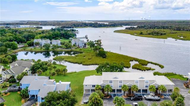 2879 N Rivers Edge Boulevard, Crystal River, FL 34429 (MLS #802971) :: Plantation Realty Inc.