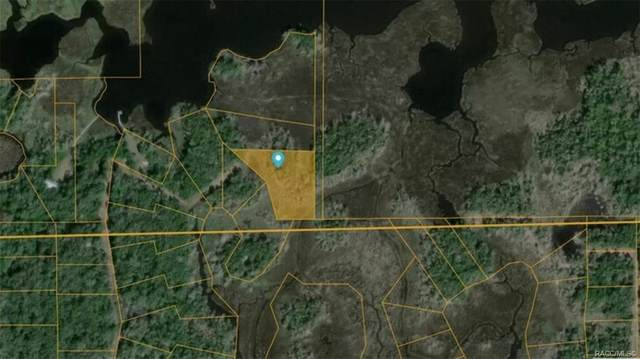 13528 Sportsmans Island, Homosassa, FL 34429 (MLS #803283) :: Plantation Realty Inc.