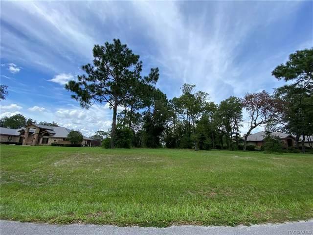 3642 N Pine Valley Loop, Lecanto, FL 34461 (MLS #803435) :: Plantation Realty Inc.