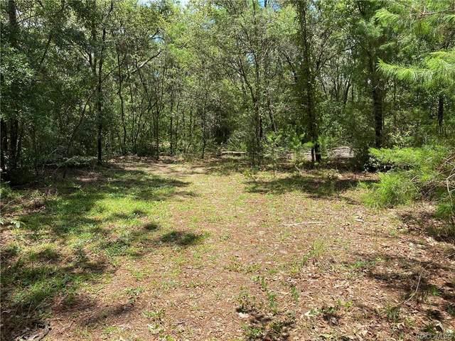 12262 S Oakview Avenue, Floral City, FL 34436 (MLS #803439) :: Plantation Realty Inc.