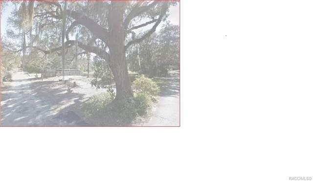 8800 E Freeman Court, Floral City, FL 34436 (MLS #803502) :: Plantation Realty Inc.