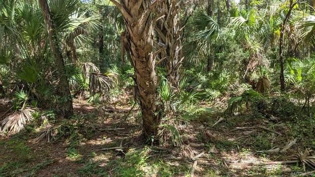 0 Azalee Avenue, Inglis, FL 34449 (MLS #803559) :: Plantation Realty Inc.