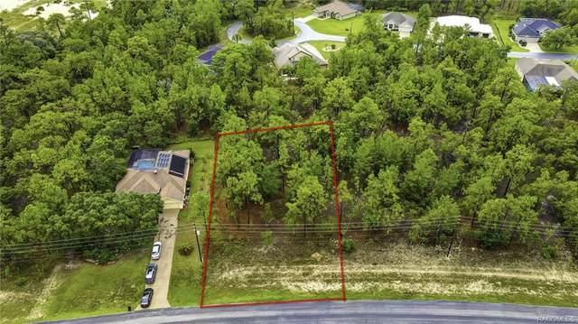 67 Glenridge Boulevard, Homosassa, FL 34446 (MLS #803643) :: Plantation Realty Inc.