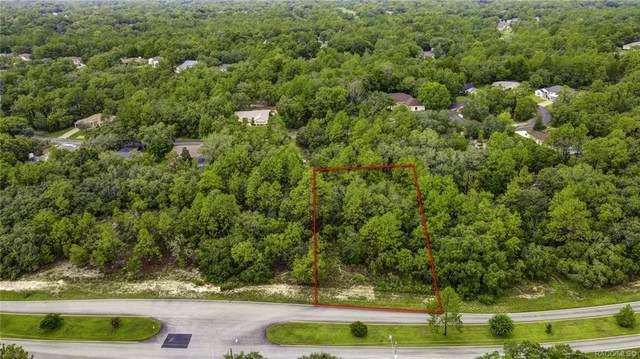117 Cypress Boulevard E, Homosassa, FL 34446 (MLS #803648) :: Plantation Realty Inc.