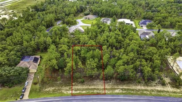 65 Glenridge Boulevard, Homosassa, FL 34446 (MLS #803649) :: Plantation Realty Inc.