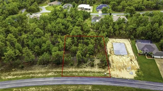 61 Glenridge Boulevard, Homosassa, FL 34446 (MLS #803655) :: Plantation Realty Inc.