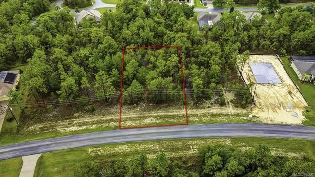 63 Glenridge Boulevard, Homosassa, FL 34446 (MLS #803657) :: Plantation Realty Inc.