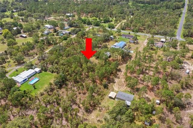 6011 S Morrow Point, Homosassa, FL 34446 (MLS #803725) :: Plantation Realty Inc.