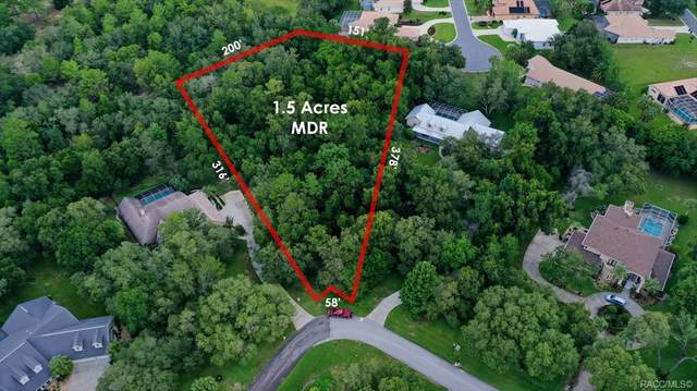 1436 N Circus Terrace, Hernando, FL 34442 (MLS #803748) :: Plantation Realty Inc.