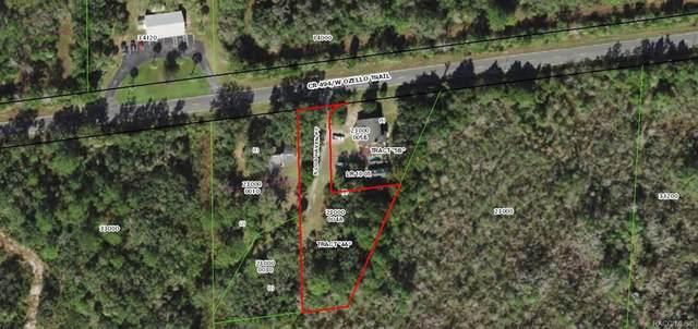 645 S Log Haven Point, Crystal River, FL 34429 (MLS #803781) :: Plantation Realty Inc.