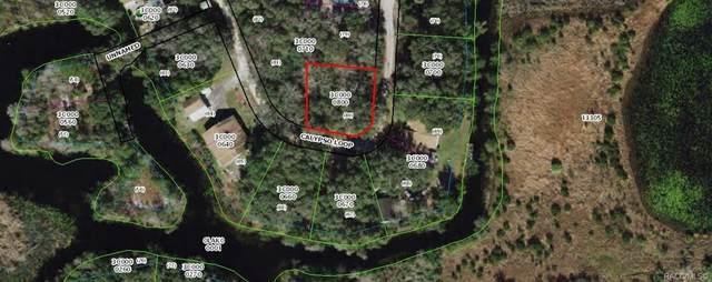 7125 E Calypso Loop, Inverness, FL 34453 (MLS #803799) :: Plantation Realty Inc.