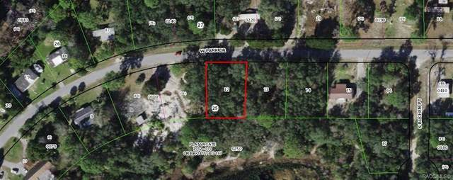 6592 W Park Drive, Homosassa, FL 34453 (MLS #803800) :: Plantation Realty Inc.