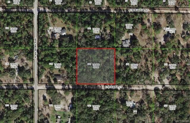 347 E Shawna Court, Hernando, FL 34442 (MLS #803810) :: Plantation Realty Inc.