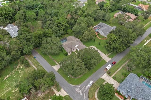 379 Martina Drive, Spring Hill, FL 34609 (MLS #803860) :: Plantation Realty Inc.