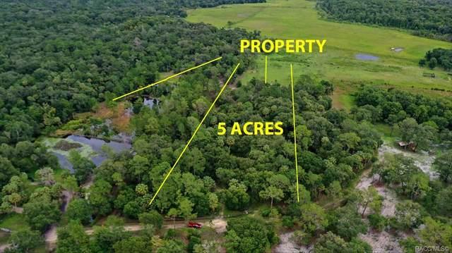 6699 N Broken Arrow Trail, Hernando, FL 34442 (MLS #803902) :: Plantation Realty Inc.
