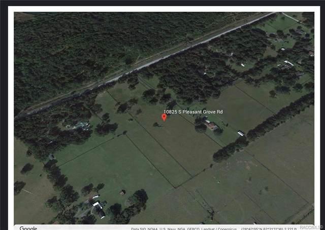 10825 S Pleasant Grove Road, Inverness, FL 34452 (MLS #803919) :: Plantation Realty Inc.