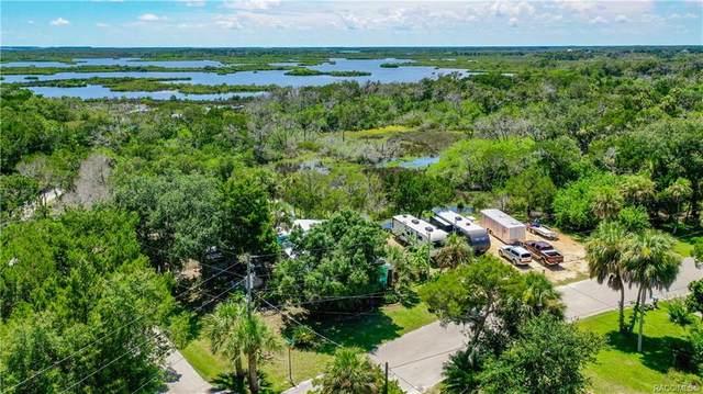 2296 S Ferndell Point, Crystal River, FL 34429 (MLS #803931) :: Plantation Realty Inc.