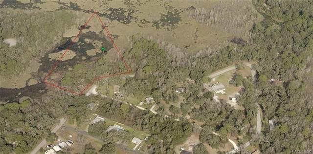 6741 N Beechnut Loop, Hernando, FL 34442 (MLS #803962) :: Plantation Realty Inc.