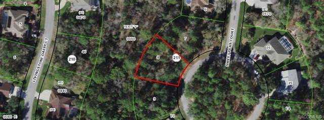 16 Sweet Peas Court, Homosassa, FL 34446 (MLS #803971) :: Plantation Realty Inc.