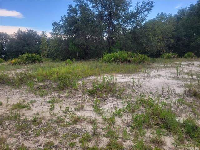 Lot 5 SW South Lakes Court, Dunnellon, FL 34431 (MLS #803979) :: Plantation Realty Inc.