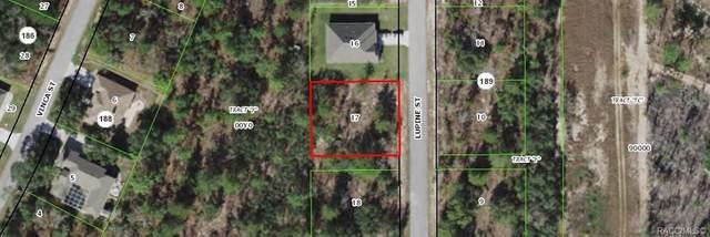 19 Lupine Street, Homosassa, FL 34446 (MLS #804007) :: Plantation Realty Inc.