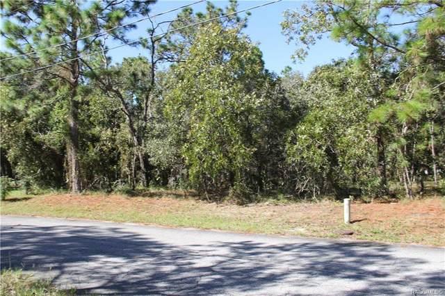 12 Sanders Court W, Homosassa, FL 34446 (MLS #804012) :: Plantation Realty Inc.