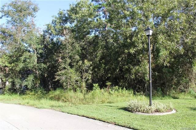 16 Iberis Court, Homosassa, FL 34446 (MLS #804019) :: Plantation Realty Inc.