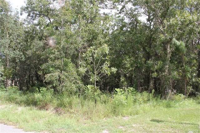 12 Cyclamen Court W, Homosassa, FL 34446 (MLS #804022) :: Plantation Realty Inc.
