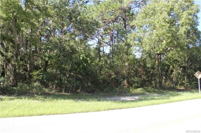 2 Cypress Circle, Homosassa, FL 34446 (MLS #804024) :: Plantation Realty Inc.