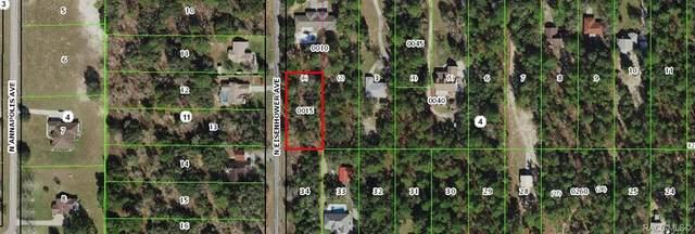 3209 N Eisenhower Avenue, Hernando, FL 34442 (MLS #804027) :: Pristine Properties