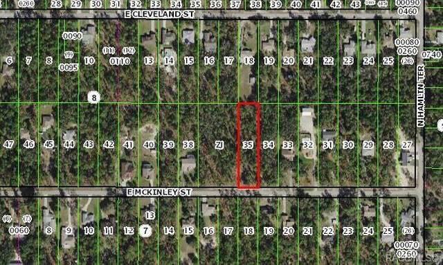 1651 E Mckinley Street, Hernando, FL 34442 (MLS #804032) :: Plantation Realty Inc.