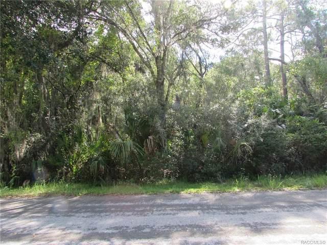 8705 N Bellflower Way, Crystal River, FL 34428 (MLS #804053) :: Pristine Properties