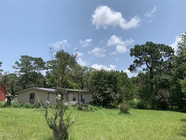 6097 W Kampala Lane, Dunnellon, FL 34433 (MLS #804061) :: Pristine Properties
