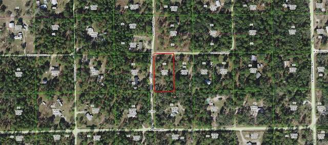 8710 N Meyer Square, Dunnellon, FL 34433 (MLS #804065) :: Pristine Properties