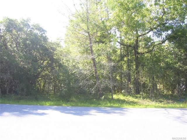 1373 N Mediterranean Way, Inverness, FL 34453 (MLS #804111) :: Plantation Realty Inc.