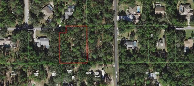 1320 W Mineral Court, Hernando, FL 34442 (MLS #804120) :: Plantation Realty Inc.
