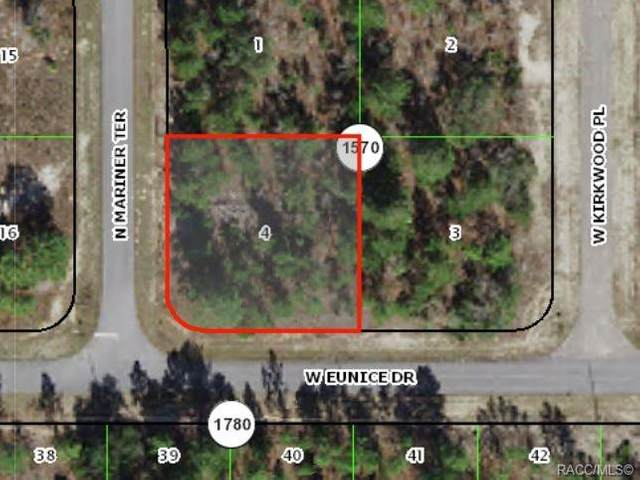 6202 N Mariner Terrace, Citrus Springs, FL 34433 (MLS #804124) :: Plantation Realty Inc.
