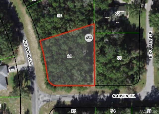 8599 N Upland Drive, Citrus Springs, FL 34434 (MLS #804136) :: Plantation Realty Inc.
