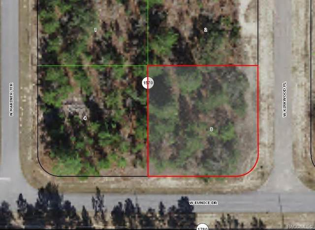3359 W Kirkwood Place, Citrus Springs, FL 34433 (MLS #804145) :: Plantation Realty Inc.