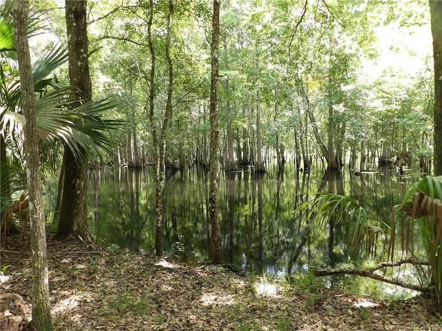 8148 S Kimberly Circle, Floral City, FL 34436 (MLS #804155) :: Plantation Realty Inc.