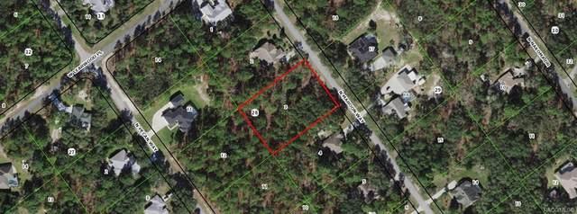 5898 N Maroon Way, Beverly Hills, FL 34465 (MLS #804172) :: Plantation Realty Inc.
