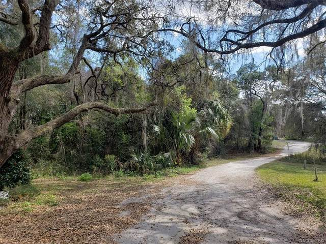 81 N Sheltering Oaks Drive, Inverness, FL 34453 (MLS #804191) :: Plantation Realty Inc.