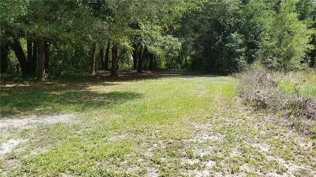98 N Sheltering Oaks Drive, Inverness, FL 34453 (MLS #804192) :: Plantation Realty Inc.