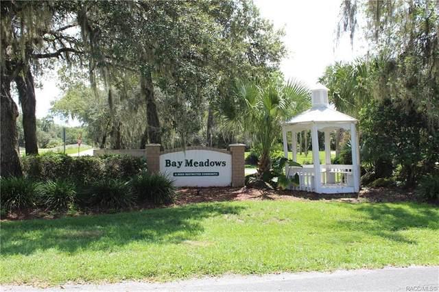 9516 E Baymeadows Drive, Inverness, FL 34450 (MLS #804205) :: Plantation Realty Inc.