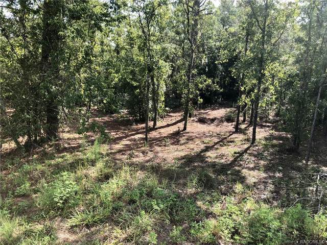 00 SW 141st Court, Other, FL 34481 (MLS #804215) :: Plantation Realty Inc.