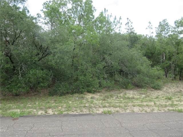 9215 N Hawkweed Drive, Citrus Springs, FL 34433 (MLS #804217) :: Plantation Realty Inc.