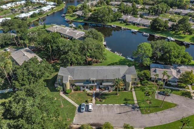 11535 W Sandpiper Court, Crystal River, FL 34429 (MLS #804244) :: Plantation Realty Inc.