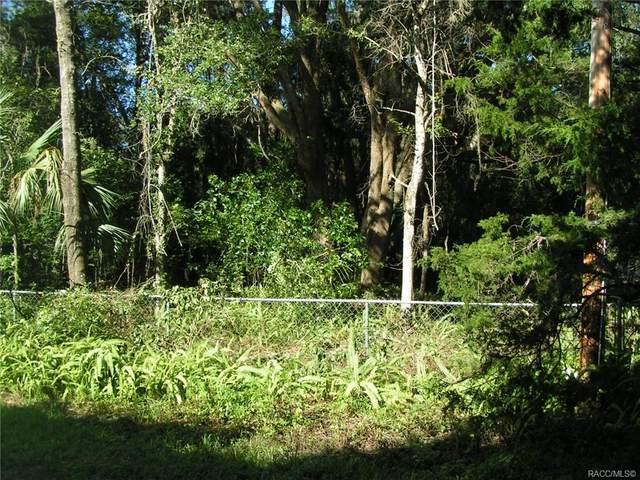 12910 N Isle Point, Dunnellon, FL 34433 (MLS #804310) :: Plantation Realty Inc.