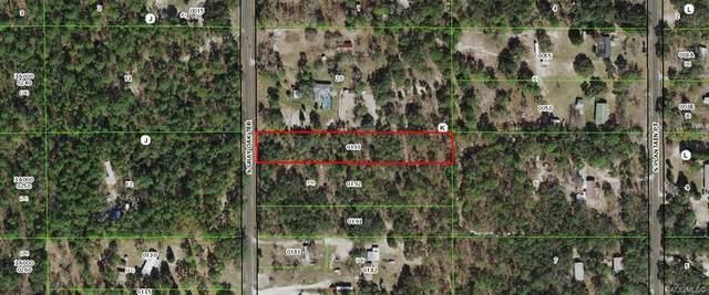 5567 S Gray Oak Terrace, Lecanto, FL 34461 (MLS #804321) :: Plantation Realty Inc.